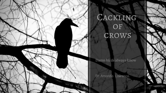 Cackling of crows
